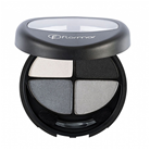 Quartet Eyeshadow 404