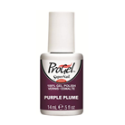 Progel Purple Plume